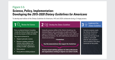 Figure I-3. Science, Policy, Implementation: Developing the 2015-2020 Dietary Guidelines for Americans